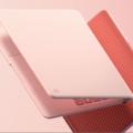 Pixelbook Go w/ 64GB ROM